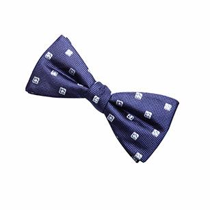 方形点刺绣时尚领结
